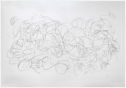 "Untitled, graphite on paper, 52.5 x 76"", 2007"